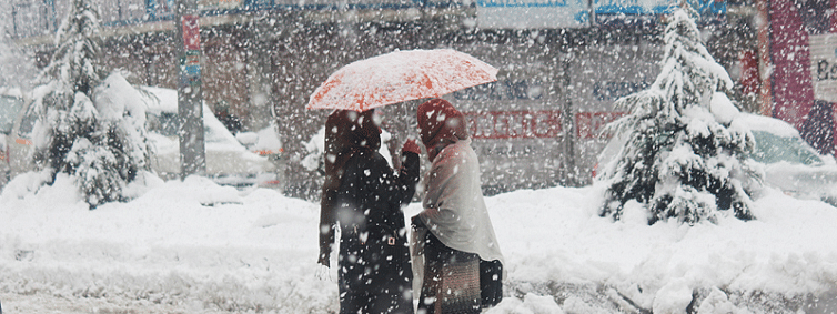 Fresh WD hits J&K; widespread rain, snow predicted