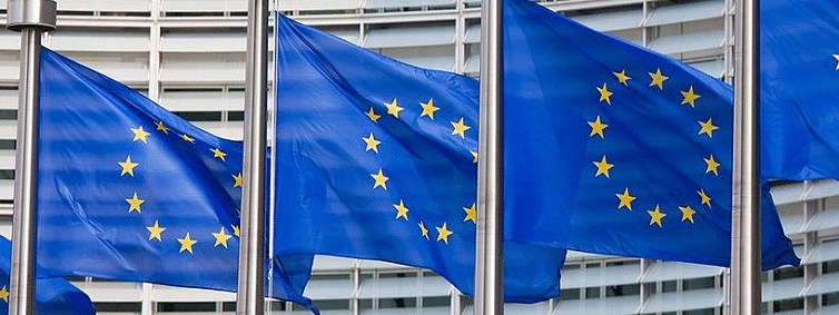 Level of inequality worldwide higher today: Council of EU