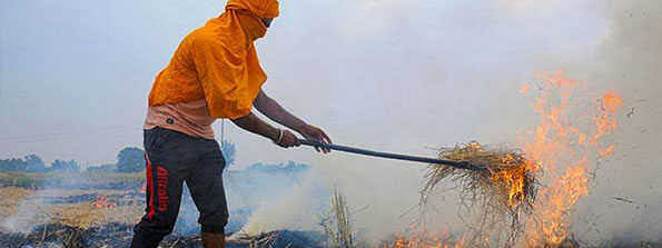 UP: 19 farmers booked for stubble burning