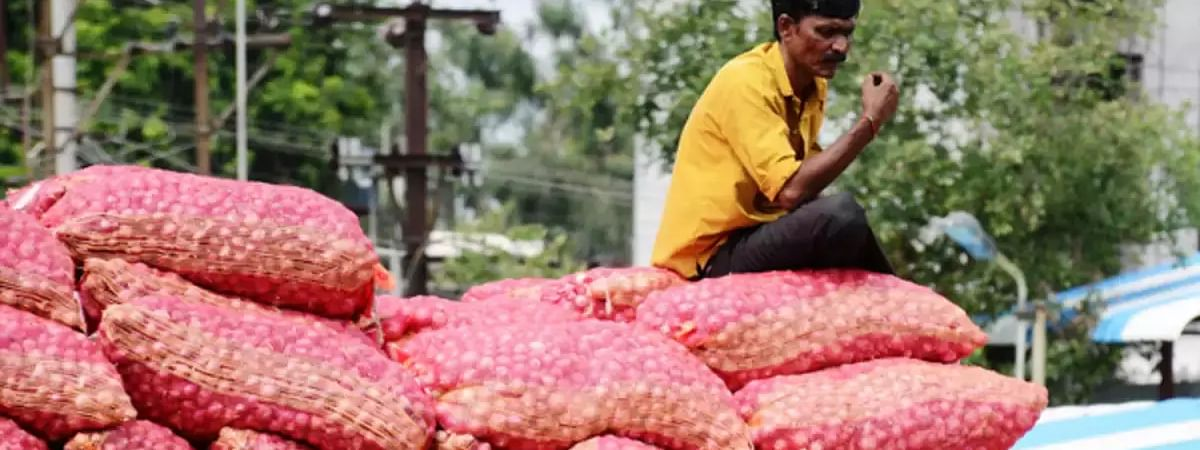 Onions from Afghan: Price comes down in Chandigarh