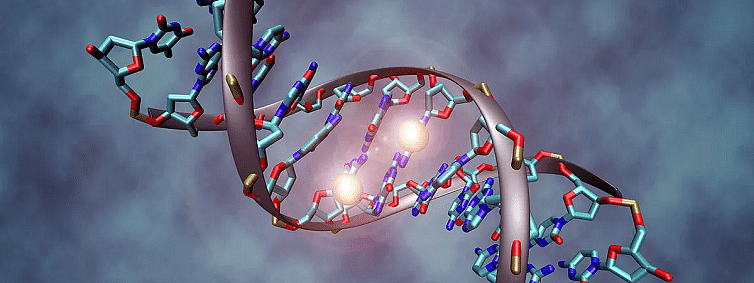 Changes in DNA may affect Carcinogenic Genes: Study