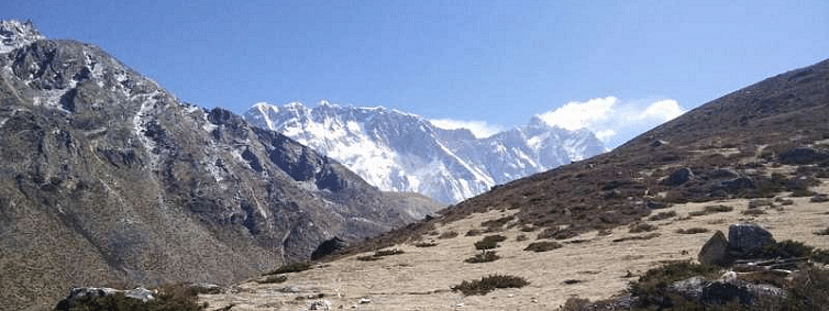 Global warming impact, grass growing around Everest