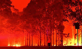 Bushfires turn Australian skies blood-red