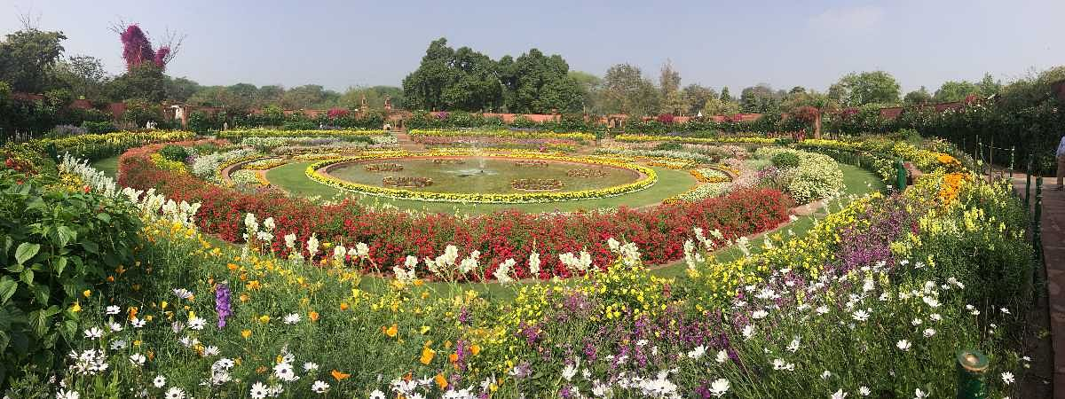 Mughal Gardens to open for public from Wednesday