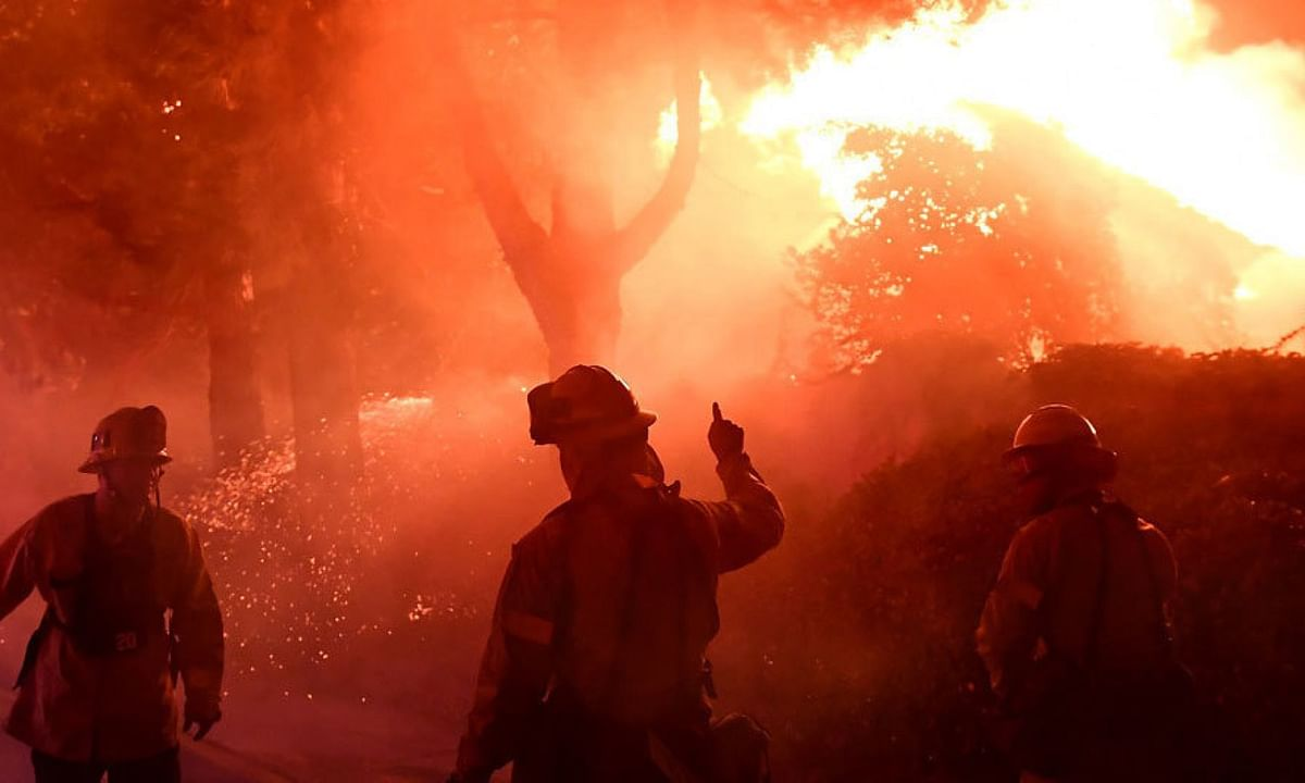 15 pc decrease in forest fire in 2020 : Dept