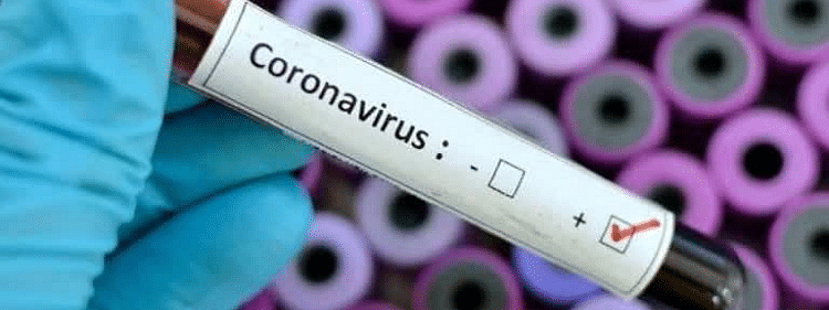 COVID-19 cases exceed 1,08,000 in Germany, deaths cross 2,100
