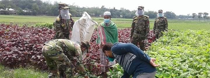 B'desh army helps farmers amid coronavirus pandemic