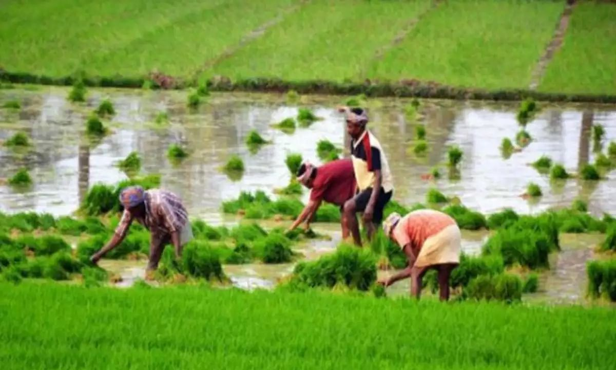 Cabinet approves 'The Farming Produce Trade and Commerce (Promotion and Facilitation) Ordinance, 2020'