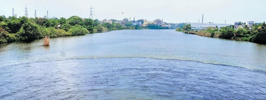 Residents on banks of river periyar shift to safer places fearing havoc