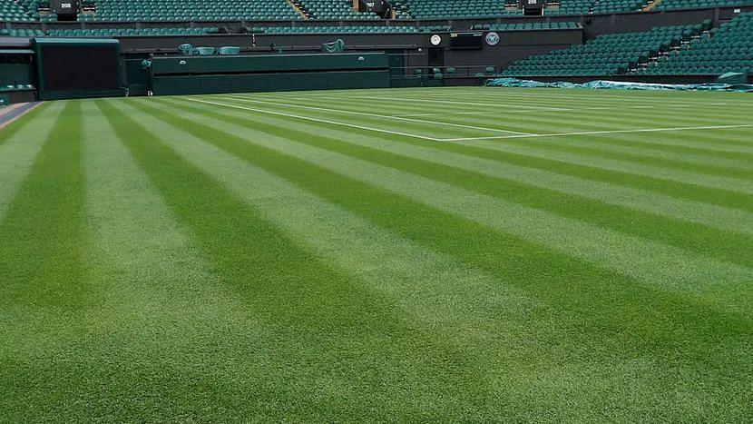 Wimbledon: দুই ম্যাচে গড়াপেটার অভিযোগ - চলছে তদন্ত