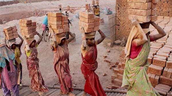 e-SHRAM: ই-শ্রম পোর্টালে নাম নথিভুক্ত করেছেন ১ কোটির বেশি অসংগঠিত শ্রমিক, ৪৩ শতাংশই মহিলা