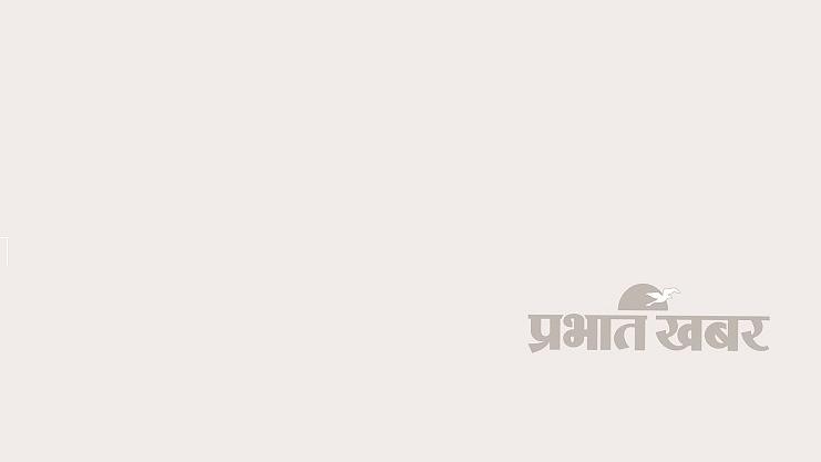 Tulsi Vastu Tips, Upay, Totke, Ravivar Ko Tulsi Kyon Nahin Todte