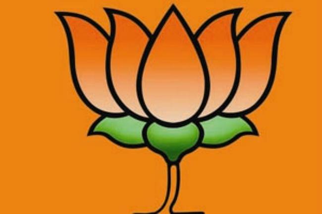 भाजपा-शिवसेना के बीच सीटों का तालमेल जल्द: रुडी