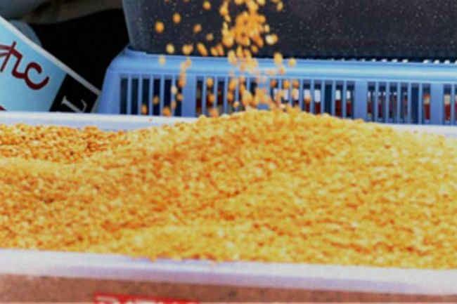 दिल्ली सरकार के स्टॉल पर 120 रुपये किलो मिल रहा है अरहर दाल