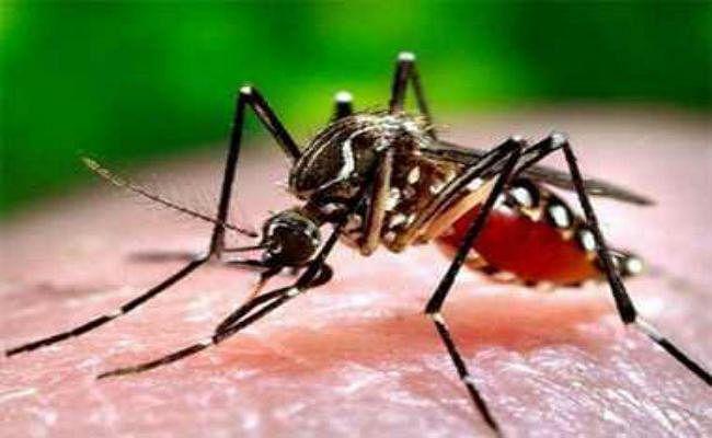 मलेरिया से सात बच्चों की मौत