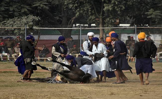 गांधी मैदान में घुड़दौड़, 5 सवार गिरकर घायल, एक मीडियाकर्मी भी घायल