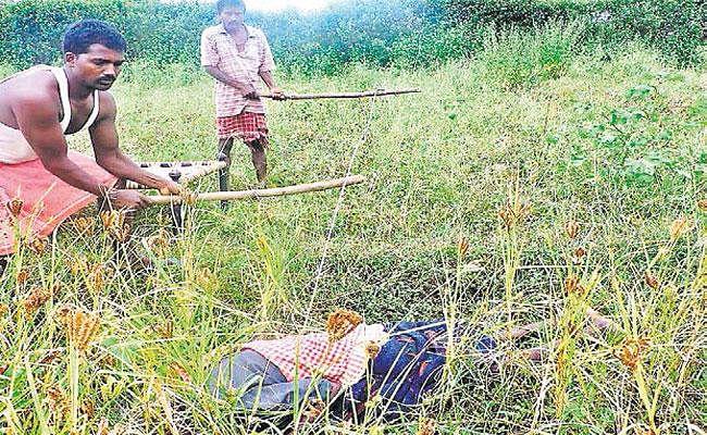 Bihar News: रास्ते में टूट कर गिरा था बिजली का तार, करंट की चपेट में आने से पति-पत्नी समेत तीन लोगों की मौत