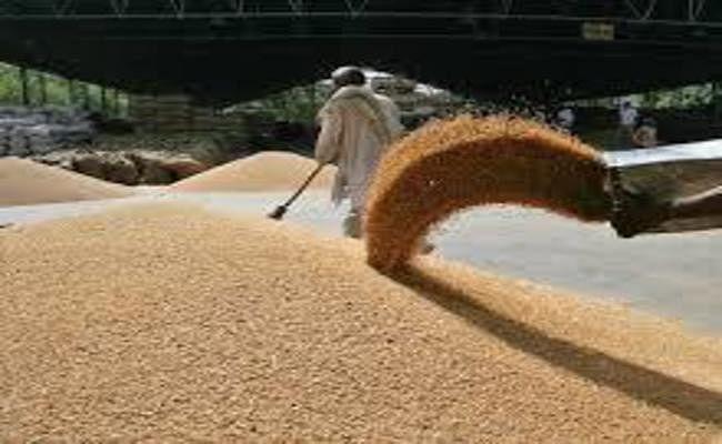 बिहार में गेहूं खरीद का लक्ष्य सात लाख एमटी करने की तैयारी, अंतिम तारीख भी बढ़ने की उम्मीद
