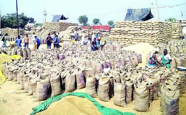 रांची : जिले में 1.39 लाख क्विंटल से अधिक धान की खरीदारी