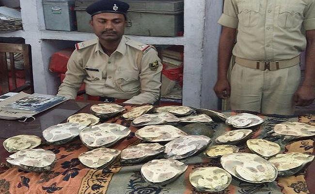 बिहार के गया जंक्शन से 25 जिंदा कछुए बरामद, तस्कर फरार