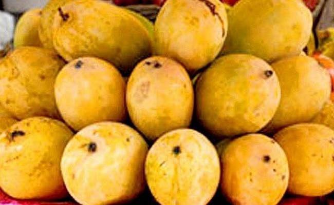 शाही लीची के बाद अब भागलपुरी जर्दालु का स्वाद चखेगा लंदन, विदेशों में बढ़ी बिहार के फलों की मांग