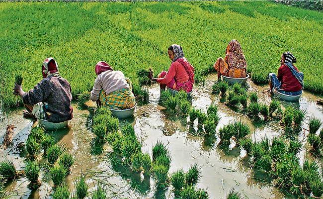 किसानों के लिए उठाने होंगे ठोस कदम