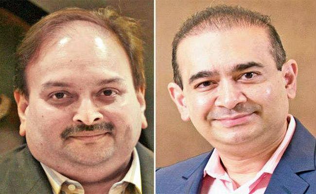 भगोड़े कारोबारी विजय माल्या, नीरव मोदी, मेहुल चोकसी को 'पकड़कर' भारत ला रही है मोदी सरकार!