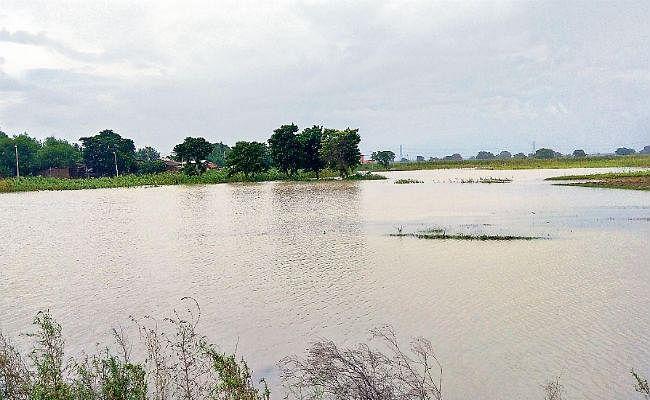 बलिया के दियारे की कई बस्तियों में घुसा बाढ़ का पानी, आवागमन ठप