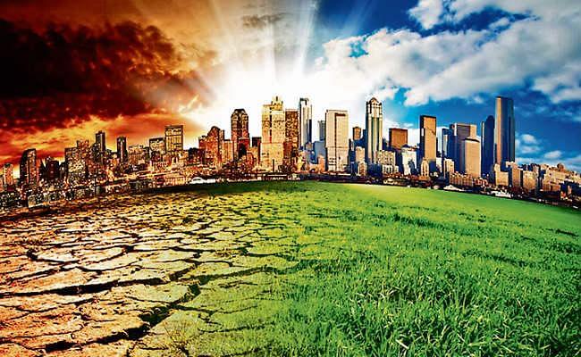 धरती बचाने की चुनौती, बहुत जरूरी है जल संरक्षण, वन्य जीवों पर मंडरा रहा खतरा