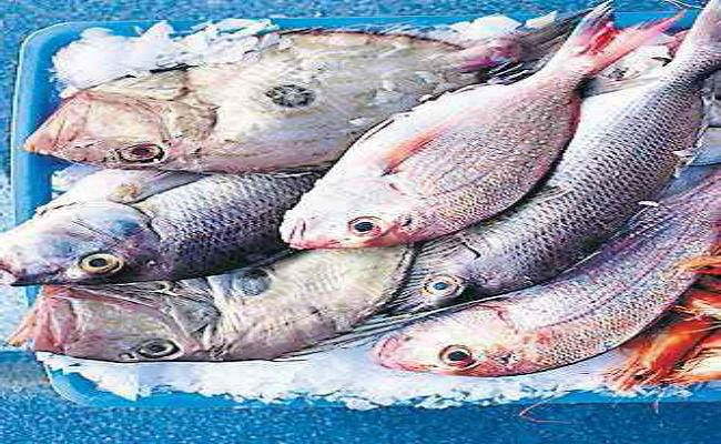पटना में आंध्र प्रदेश और पश्चिम बंगाल की मछली की बिक्री पर रोक, पूरे राज्य से जांच को भेजा जायेगा सैंपल