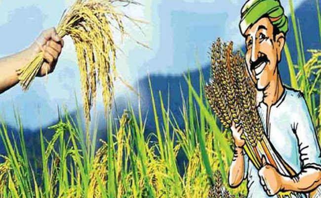 पीएम किसान सम्मान निधि योजना को जैविक खेती से जोड़ने की जरूरत