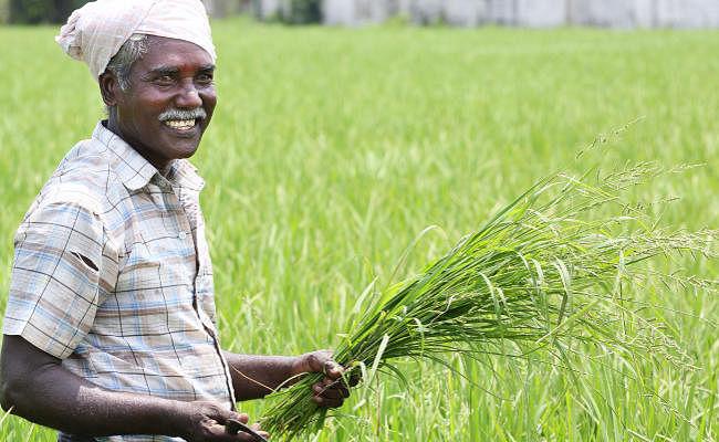 पीएम मोदी आज भेजेंगे बिहार के 80 लाख से अधिक किसानों के खाते में 1610 करोड़ रुपये, हर लाभार्थी को मिलेंगे दो-दो हजार