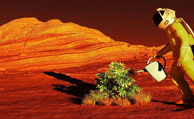 Good News: मंगल और चंद्रमा पर खेती करना संभव