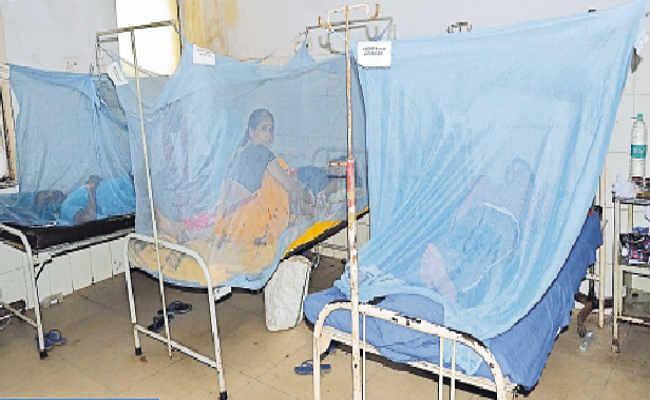 राज्य में डेंगू के मरीजों  की संख्या में लगातार हो रहा इजाफा और ब्लड बैंक में प्लेटलेट्स की भारी कमी