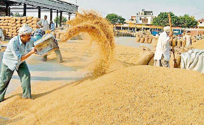 Bihar News: सुबह सदन में जोर-शोर से उठा धान का मुद्दा, मंत्री ने शाम तक शुरू करा दी धान की खरीद