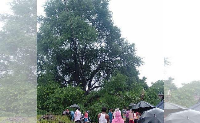 चांडिल के घोड़ानेगी में वर्षों पुराना इमली का पेड़ गिरा, पांच बाइक को लिया चपेट में