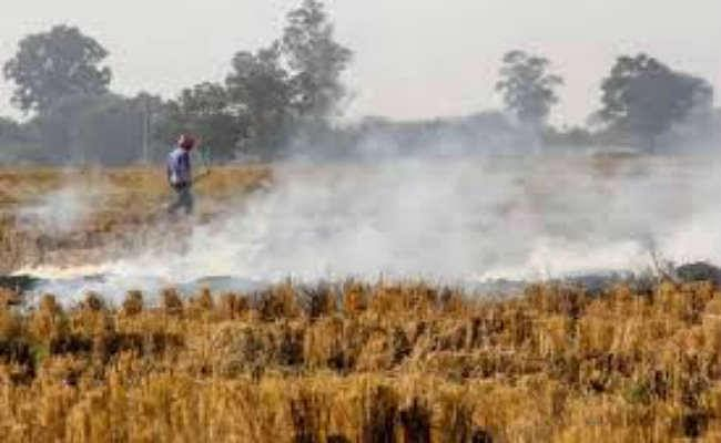 पराली जलाने से पंजाब के शहरों के साथ-साथ गांवों की हवा में भी घुल गया है जहर