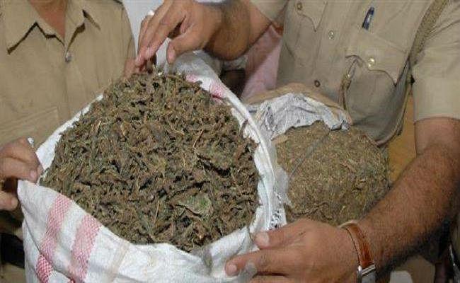 NCB की रिपोर्ट : शराब के बाद बिहार में सबसे अधिक गांजा, अफीम व चरस की हो रही तस्करी