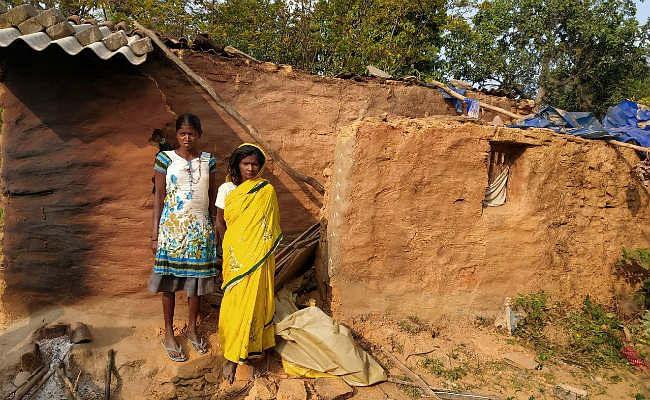 जंगली हाथियों ने 11 किसानों की फसल कर दी बरबाद, दो घरों को किया ध्वस्त