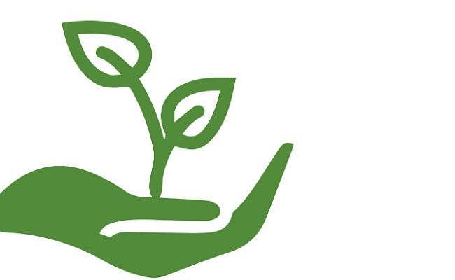 पटना : मात्र 27 फीसदी राशि ही खर्च कर पाया कृषि विभाग