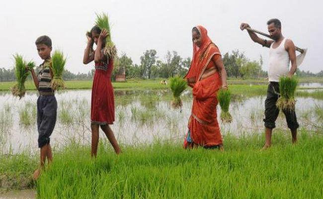 बिहार बजट : समाज कल्याण विभाग को पहले से 197.91 करोड़ ज्यादा का मिला बजट, किसानों के खाते में गये 1172 करोड़