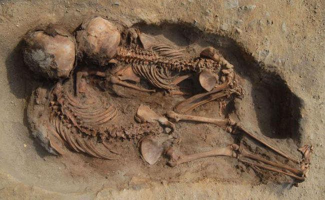 पेरू में मिली बड़ी कब्रगाह, सैकड़ों बच्चों और पशुओं की बलि का खुलासा