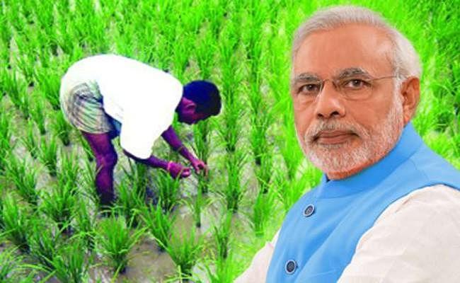 पांच करोड़ से अधिक किसानों को मिला पीएम किसान योजना का लाभ, सोशल सर्विस पर बढ़ा खर्च