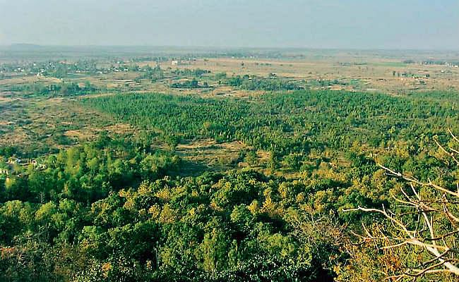 हजारीबाग में जमीन घोटाला: वन भूमि की खरीद-बिक्री में नेता और अफसर भी