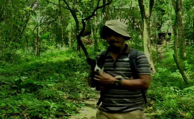 मणिपुर: पर्यावरण प्रेम में मोइरंगथेम ने नौकरी से दिया इस्तीफा, 17 साल में तैयार कर दिया 300 एकड़ का जंगल