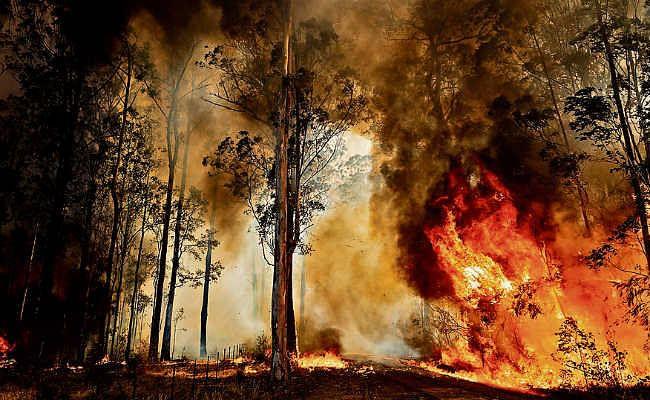 ऑस्ट्रेलिया में जंगली आग का कहर