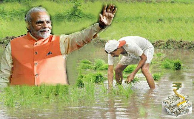 सोमवार को पूरा हो जायेगा पीएम किसान योजना का एक साल, सरकार ने अन्नदाताओं में बांटे 50,850 करोड़ रुपये