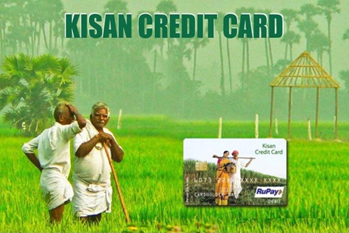 PM किसान सम्मान निधि के लाभार्थियों को सस्ता लोन दे रही है सरकार, जल्द उठाएं लाभ