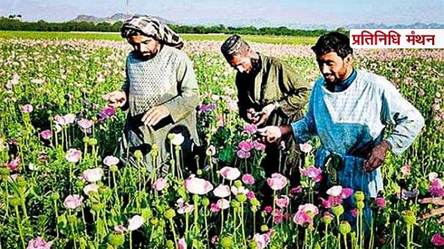 अफ़ग़ानिस्तान, अमेरिका और अफीम के बीच बेहद गहरे रिश्ते को समझिए