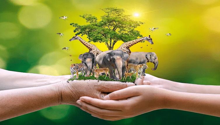 विश्व पशु दिवस 2021: पशुओं की उचित देखभाल एवं संरक्षण हमारे बेहतर कल की गारंटी कैसे है? जानिए